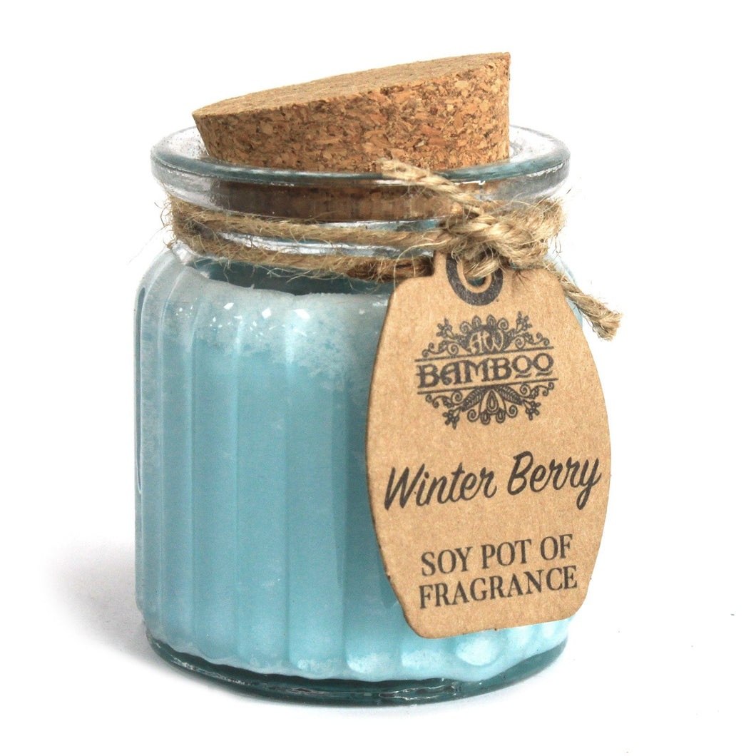 Soy Pot Of Fragrance Glass Jar Candle - Winter Berry
