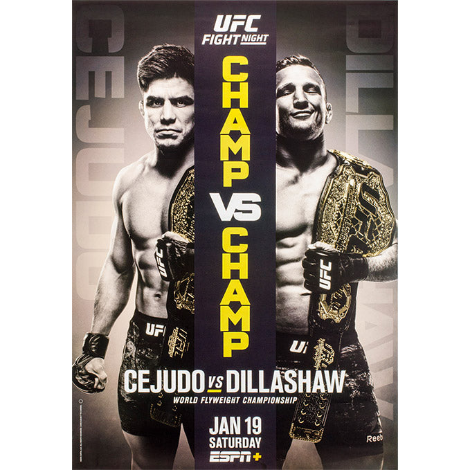 UFC Brooklyn Event Poster