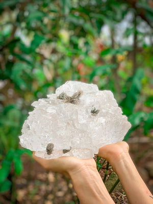 Light Activating Selenite Cluster with Inclusions