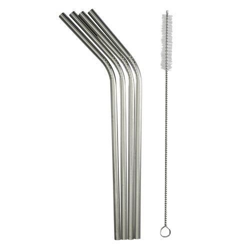 Stainless Steel Straws (Pack of 4 & Brush)