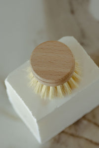 Dish Brush - Agave Fiber Brush With Replaceable Head