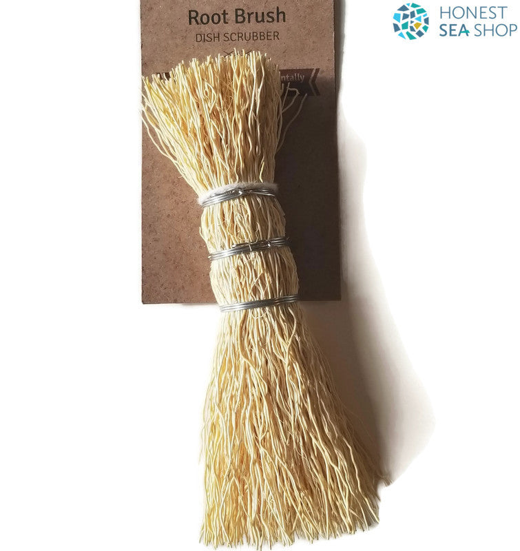 Root Brush/ Dish Scrubber