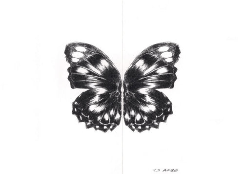 Butterfly Effect Print