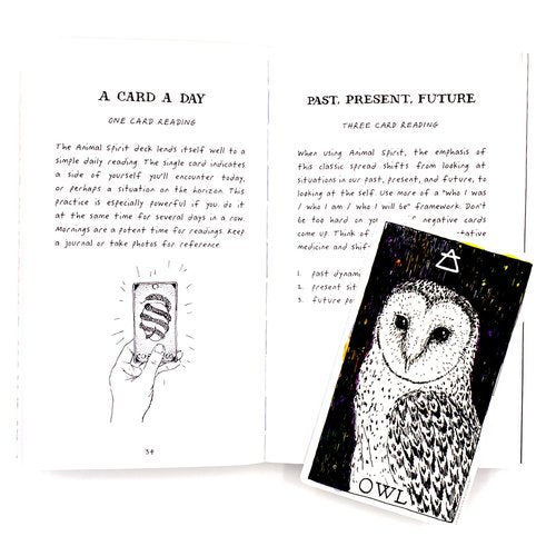 The Wild Unknown Animal Spirit Guidebook