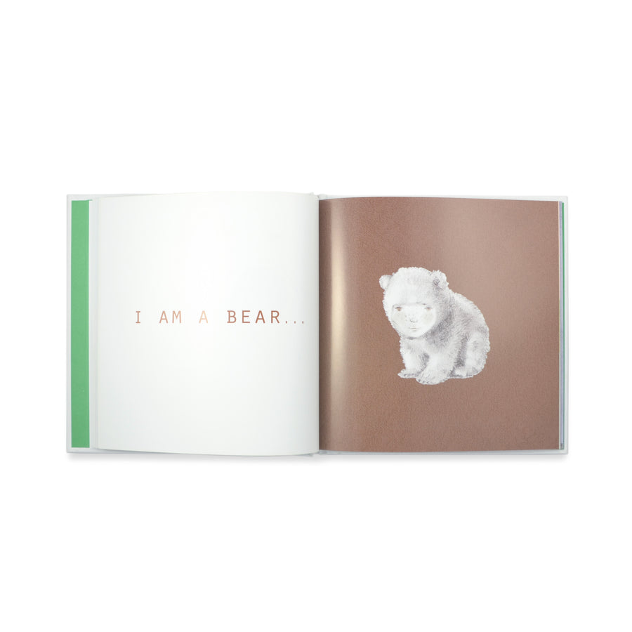 'I Am Earth' Book