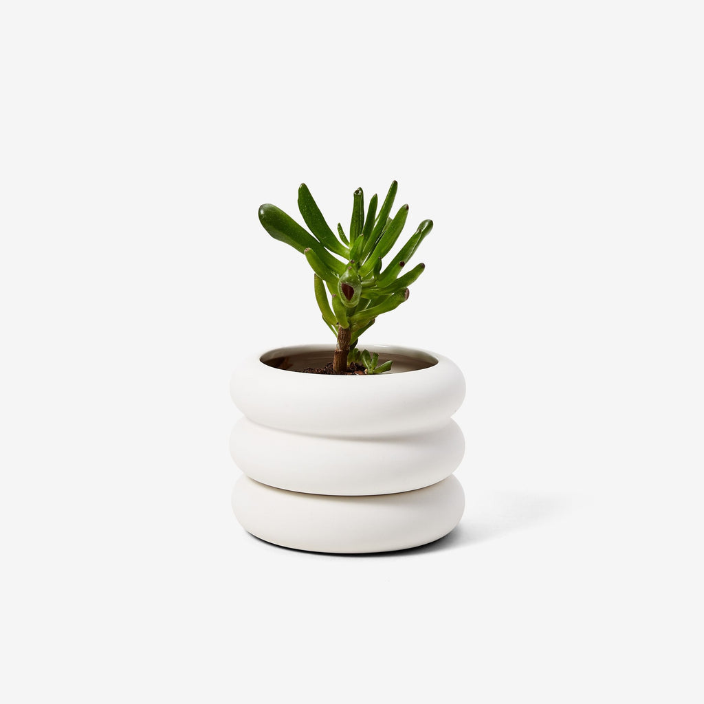 Stacking Planter Mini