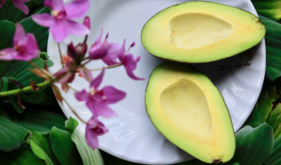 Avocados for brain health