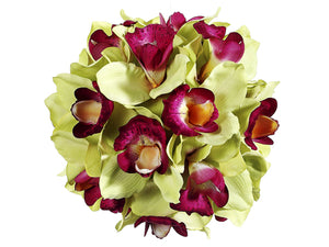 "9"" Cymbidium Orchid Ball  Green Beauty (pack of 6)"