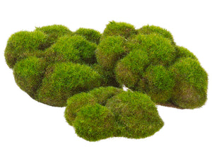 "5.9""Wx5.5""L Assorted Mood Moss x3 in Poly Bag Green (pack of 6)"