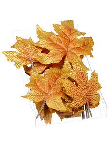 "1""Hx5""Wx9""L Assorted Maple Leaf (18 ea/Acelate box) Brown (pack of 6)"