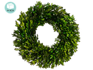 "17"" Preserved Boxwood Wreath  Green (pack of 2)"