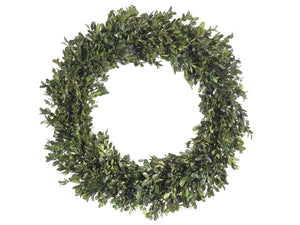 "22"" Preserved Boxwood Wreath  Green (pack of 2)"