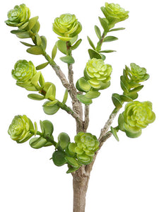 "8.5"" Soft Plastic Sedum Pick  Green (pack of 24)"