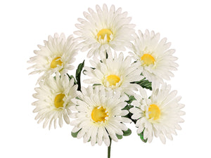 "14"" Gerbera Daisy Bush x7  White (pack of 24)"