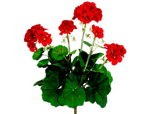 "16"" Geranium Bush  Red (pack of 12)"