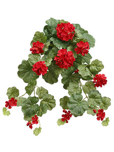 "14"" Geranium Hanging Bush x6  Red (pack of 6)"