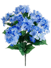 Load image into Gallery viewer, Delphinium Blue