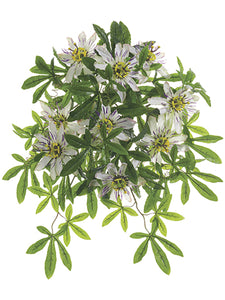 "20.5"" Protected Passion Flower Bush Cream (pack of 6)"