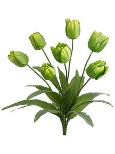 "19.5"" Tulip Bush x7  Green (pack of 12)"