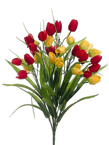 "19"" Tulip Bush x11  Red Yellow (pack of 12)"