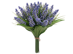 "10.5"" Muscari Bundle  Helio Blue (pack of 6)"