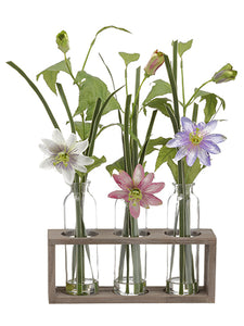 "19"" Clematis in Glass Vase x3 in Wood Planter Purple Pink (pack of 4)"