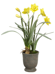 "22.5"" Daffodil in Cement Urn  Yellow (pack of 4)"