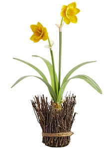 "18"" Daffodil With Bulb in Twig Container Yellow (pack of 6)"
