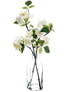 "18"" Cherry Blossom in Glass Vase White Cream (pack of 12)"