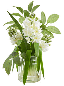 "12.5"" Hyacinth in Glass Vase  White Green (pack of 4)"