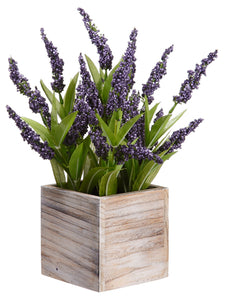 "14"" Lavender in Wood Container Purple (pack of 4)"