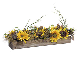 "10""Wx35""L Sunflower/ Eucalyptus/Pine Cone/Pine Centerpiece in Wooden Box Yell (pack of 4)"