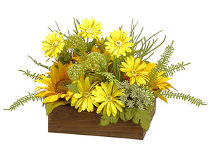 "10"" Sunflower/Daisy/Queen Anne's Lace in Wood Box Yellow Green (pack of 4)"