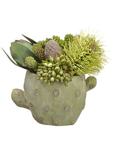 "8"" Protea/Leucadendron/Sedum in Cement Cactus Planter Green Brown (pack of 2)"
