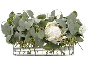 "12""Hx12""Wx20""L Protea/ Eucalyptus Arrangement in Glass Vase White Green (pack of 1)"