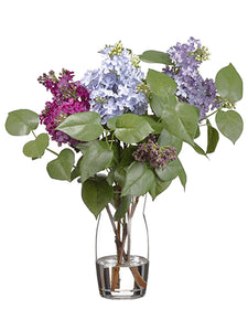 "19""Hx10""W Lilac/Sedum Arrangement in Glass Vase Lavender Purple (pack of 1)"