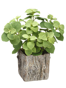 "12"" Mint Leaf Plant in Cement Planter Green (pack of 6)"