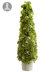 "29"" Sedum/Berry Cone Topiary in Clay Pot Green Cream (pack of 1)"