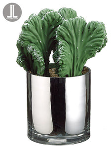 "11.5"" Coral Cactus in Glass Vase Green (pack of 2)"