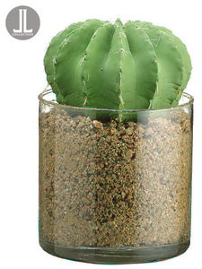 "5.25"" Barrel Cactus in Glass Vase Green (pack of 4)"