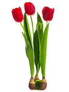 "18"" Standing Tulip With Bulb  Red (pack of 6)"