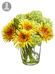 "10"" Gerbera Daisy/Snowball in Glass Vase Yellow Green (pack of 4)"