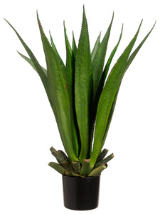 "33"" Agave Plant with 15 Leaves in Black Plastic Pot Two Tone Green (pack of 1)"