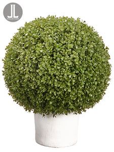 "25"" Boxwood Ball in Clay Pot  Green (pack of 1)"