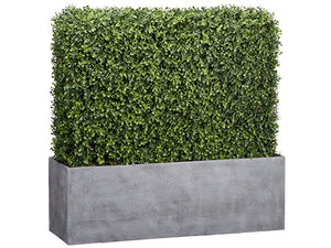 "30""Hx9.5""Wx30""L Boxwood Hedgr in Wood Planter Green (pack of 1)"