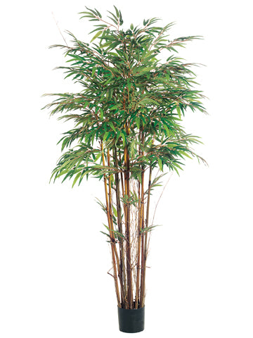 5' Natural Trunk Bamboo Tree x12 with 1840 Leaves in Pot Two Tone Green (pack of 2)