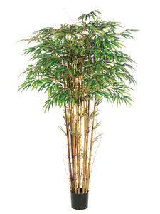 6' Natural Trunk Bamboo Tree x15 with 2240 Leaves in Pot Two Tone Green (pack of 2)