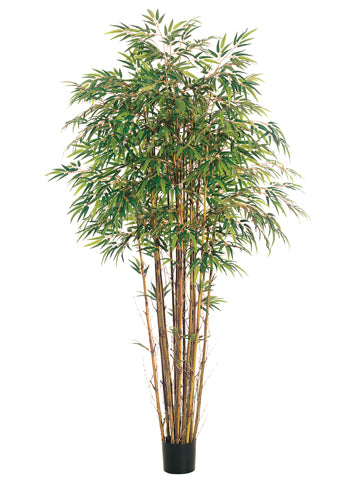 7' Natural Trunk Bamboo Tree x17 with 2560 Leaves in Pot Two Tone Green (pack of 2)