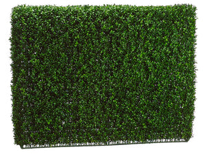 "36""Hx9""Wx46""L Boxwood Hedge  Two Tone Green (pack of 1)"