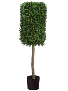 "50"" Rectangular Boxwood Topiary in Plastic Pot Two Tone Green (pack of 1)"
